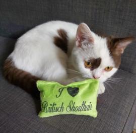 Snuffelzakje Limegroen I ♡ British Shorthair (gevuld met catnip)
