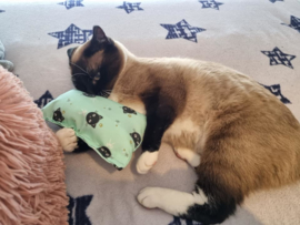 Slaap/speelkussen Mintgroen (gevuld naar wens)