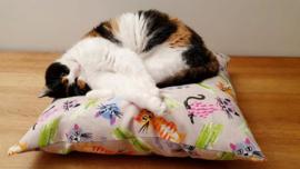 SnuffelKUSSEN Blije kat Roze (gevuld naar wens)