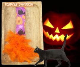 Snuffelzakje gym Halloween Pompoen met verenstaart (gevuld naar wens)