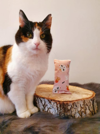 Snuffelzakje Zeeprinses (catnip)