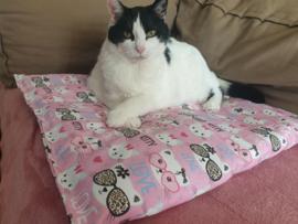 (uitverkocht) Kattenkleed Kitty 50x50