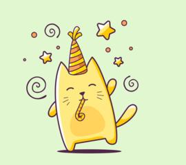 VIC (Very Important Cat) VERRASSINGPAKKET abonnement  WOONACHTIG IN NEDERLAND ( 12 maanden)