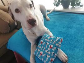 Snuffelzakje MEGA Snoopy