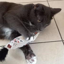 Snuffelzakje Funny cat met staart (gevuld met catnip én valeriaan)