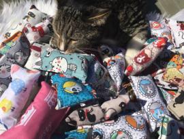 Cadeautasje Verjaardag kat  verrassing (catnip)