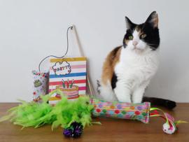 Verjaardag cadeaupakket kat