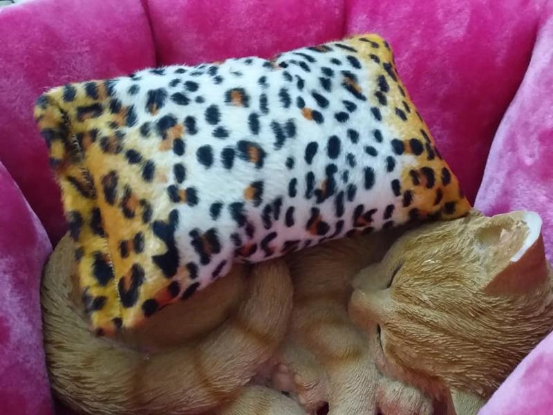 Slaapkussen Luipaard (gevuld naar wens)