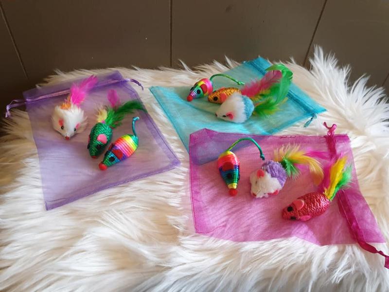 3 muizen in cadeauzakje