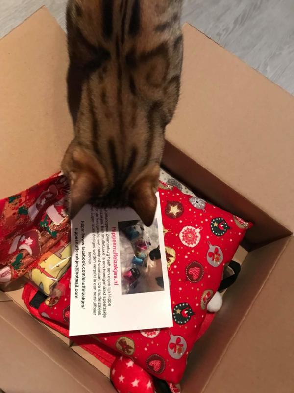 Kerst cadeaupakket XL