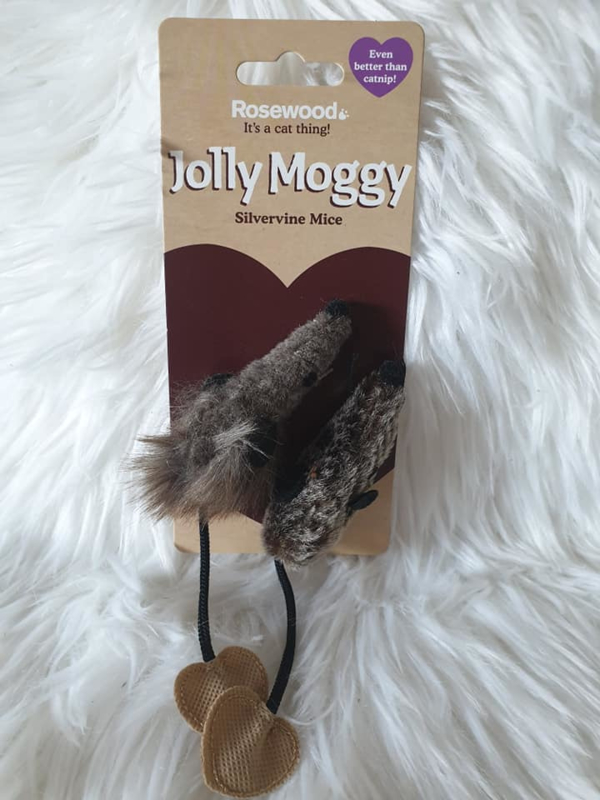 Jolly Moggy silvervine