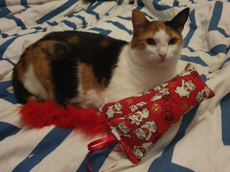 Snuffelzakjeset  Geluksbrenger met rode staart en lintjes + 1 cadeau (gevuld met catnip én valeriaan)