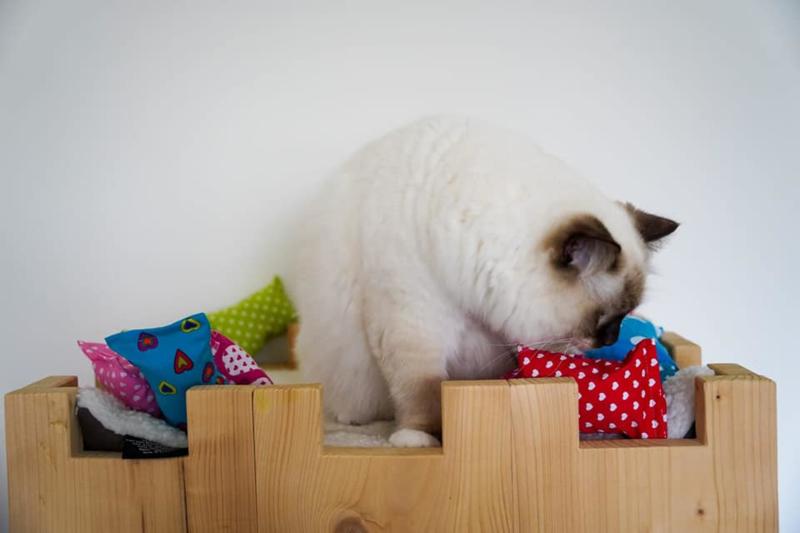 2 Snuffelzakjes Hartjes Verrassing (catnip én valeriaan)