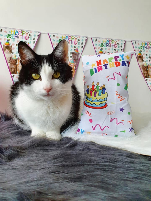 Snuffelzakjes XXL Happy Birthday (catnip)