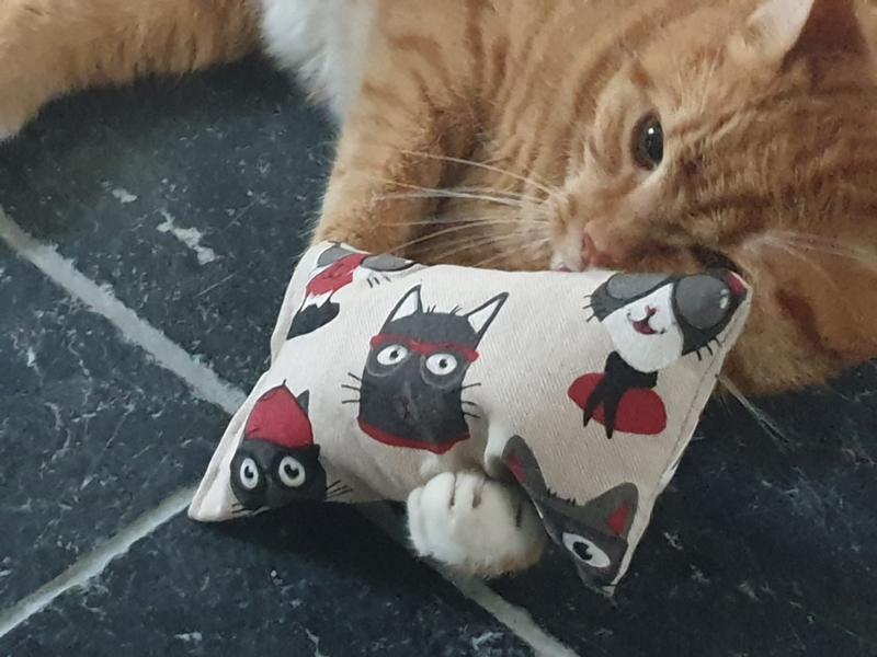 Snuffelzakjes XXL Funny Cat (gevuld met valeriaan)