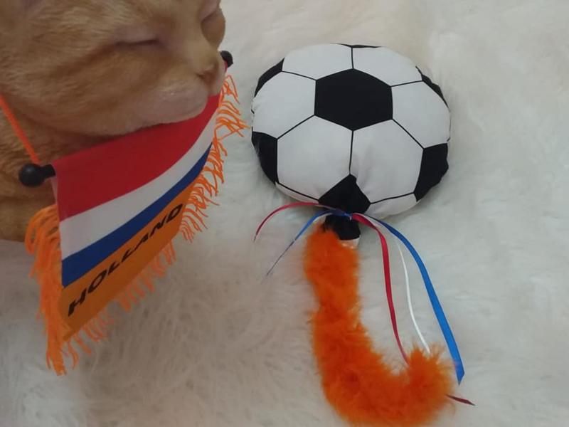 Wk snuffelvoetbal met staart en lintjes  Catnip én valeriaan (23 cm rond)