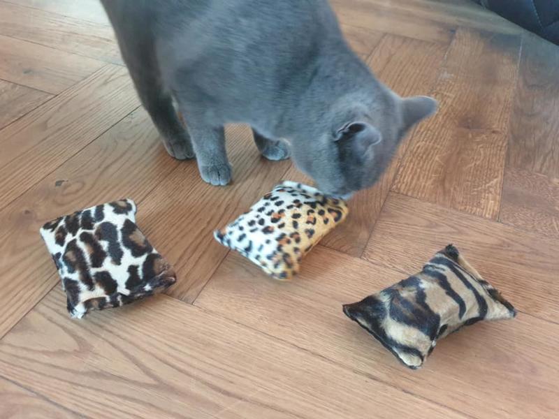 Starterspakket Wild animal  catnip, valeriaan en matatabi (3 snuffelzakjes)