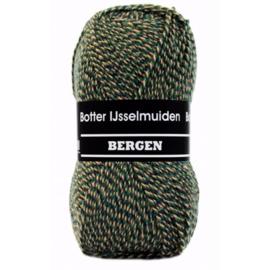 Botter IJsselmuiden Bergen Groen, Paars, Beige - 185