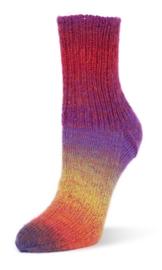 Flotte Socke kolibri - 6202