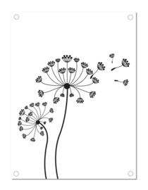 Tuinposter | paardenbloem | zwart-wit