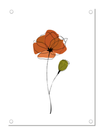 Tuinposter | klaproos | terra