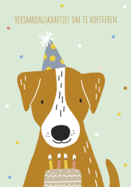 Verjaardagskaarten | bewaarbundel | hond