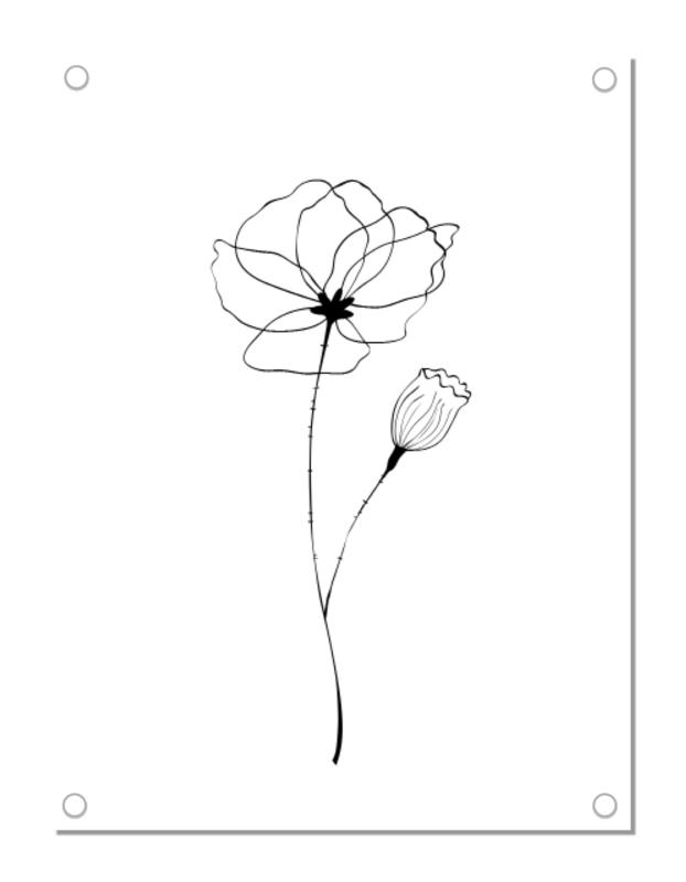 Tuinposter | klaproos | zwart-wit