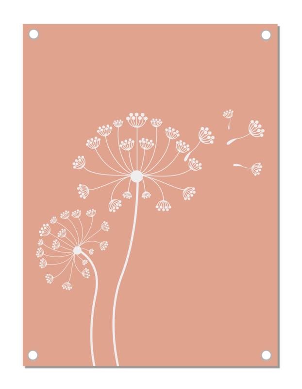 Tuinposter | paardenbloem | pink nude