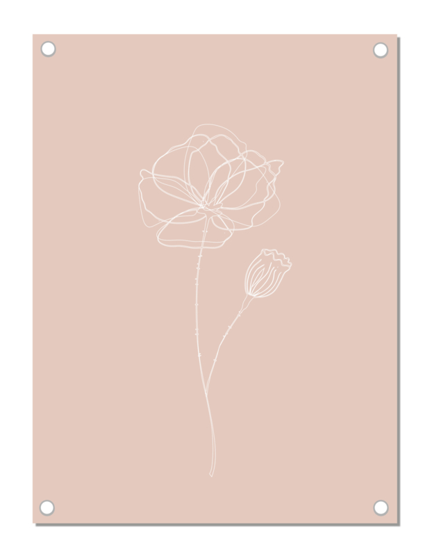 Tuinposter | klaproos | roze