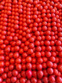 Chocobal rood
