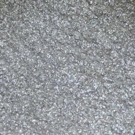 Glitter Zilver extra shine