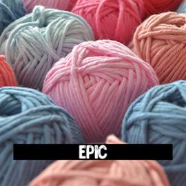 Y&C Epic