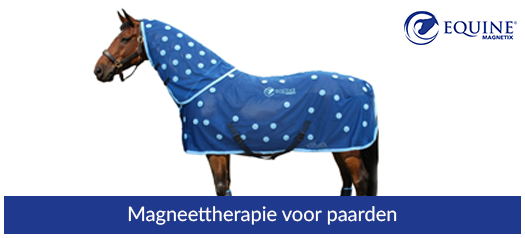 categorie-paardenv2.png