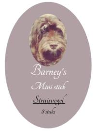 Barney's Mini Sticks Struisvogel