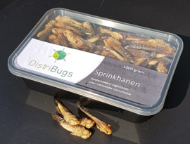 Grasshoppers, blanched frozen 1 kilo