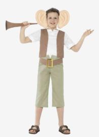 Smiffys Kinder kostuum Roald Dahl the BFG groen