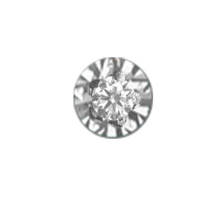 DIAMANT Sparkle 18krt WITgoud ROND