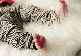 Boxpakje Zebra