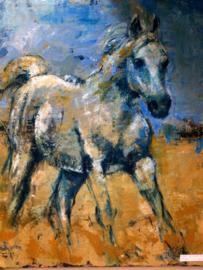 Mijn Paard - reproductie op kunstposter