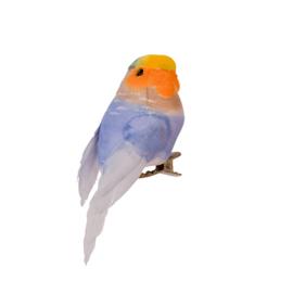 Vogeltje Lila | Rice