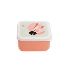 Lunchbox Papegaai | Petit Monkey