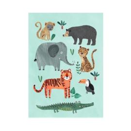 Postkaart   Wilde dieren