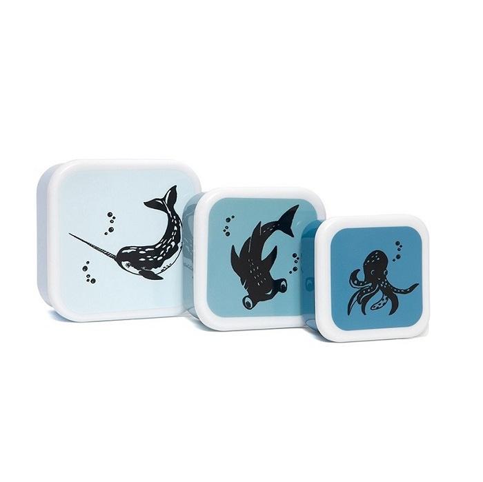 Lunchbox set Zeedieren | Petit Monkey