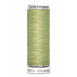 282 Groen Gutermann
