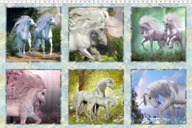 Unicorn Squares Multi
