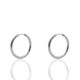 Stainless  steel oorbellen creolen 15mm Zilver