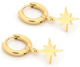 Northern star earrings rvs gold