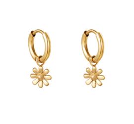 Oorbel daisy gold
