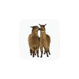 "Onderzetter ""Alpaca""  (6 stuks per set)"