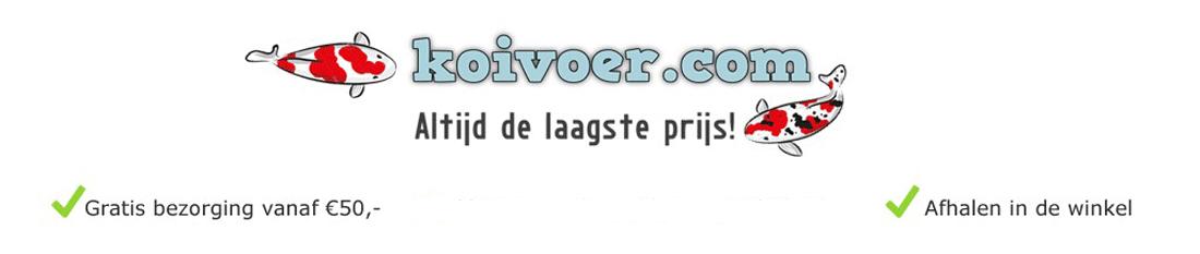 koivoer.com